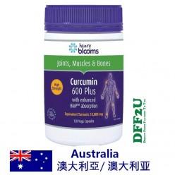 DFF2U Blooms Curcumin 600 Plus 120 Capsules